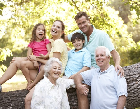 Portrait Of Extended Family Group In Park Stock Photo - 8483293