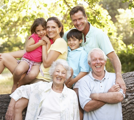 famiglia in giardino: Ritratto di gruppo della famiglia estesa, nel parco