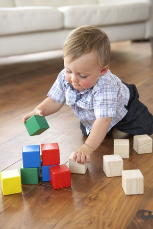 乳幼児: 色のブロックを自宅で遊ぶ少年