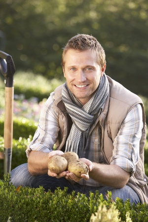 Young man posing with potatoes in garden Stock Photo - 9195582