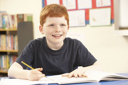 Schoolboy Studying In Classroom photo