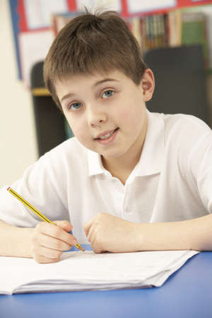 Schoolboy In IT Class Using Computer photo