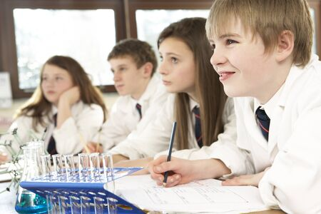 Group Of Teenage Students In Science Class Stock Photo - 9911489