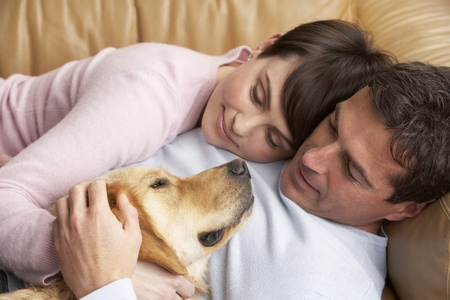 realtionship: Portrait Of Couple Relaxing On Sofa With Pet Dog At Home