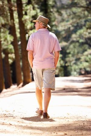 strolling: Senior man on country walk
