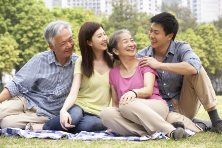 chinese family: Portrait Of Chinese Parents With Adult Children Relaxing In Park Together Stock Photo