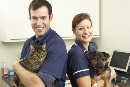 Male Veterinary Surgeon And Nurse Holding Cat And Dog In Surgery photo