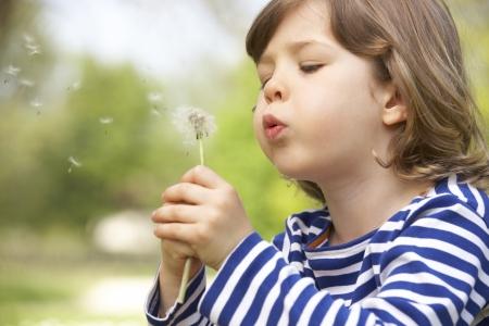 dandelion field: Young Boy Sitting In Field Blowing Dandelion