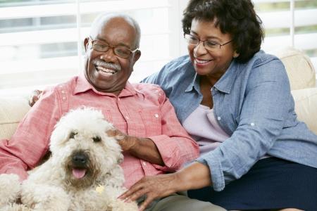 mujer perro: Pares mayores felices que se sientan en el sof� con el perro Foto de archivo