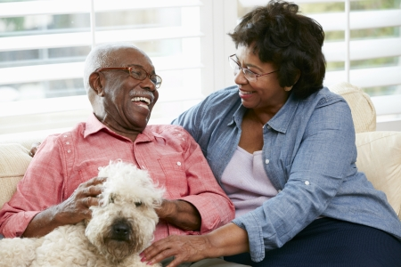 american seniors: Happy Senior Couple Sitting On Sofa With Dog