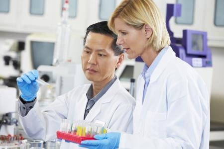 investigador cientifico: Cient�ficos y las cient�ficas en el laboratorio de