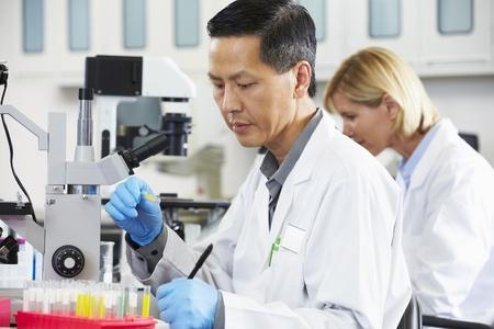 bata de laboratorio: Cient�ficos y las cient�ficas Usando microscopios en laboratorio Foto de archivo