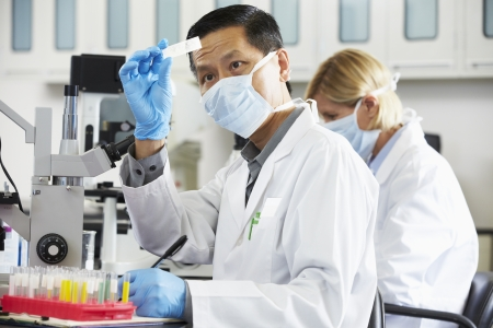 investigador cientifico: Científicos y las científicas Usando microscopios en laboratorio Foto de archivo