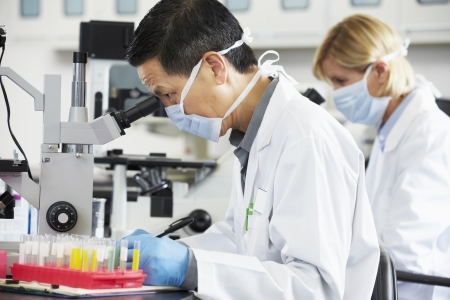 laboratory coat: Male And Female Scientists Using Microscopes In Laboratory