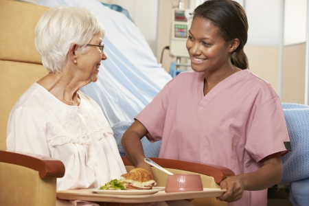 seniors care: Nurse Serving Meal To Senior Female Patient Sitting In Chair