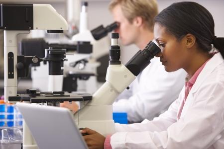 investigador cientifico: Cient�ficos y las cient�ficas Usando microscopios en laboratorio Foto de archivo