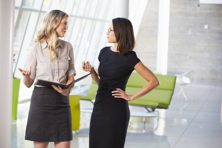 Two Businesswomen Having Informal Meeting In Modern Office Stock Photo - 18736685