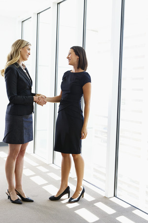Two Businesswomen Shaking Hands In Office Stock Photo - 24488553
