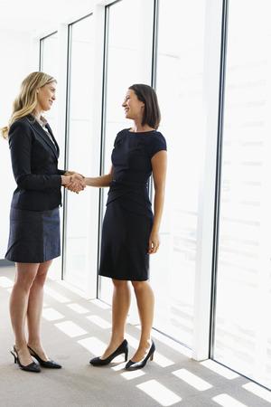 deal making: Two Businesswomen Shaking Hands In Office