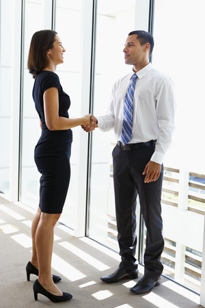 Businessman And Businesswomen Shaking Hands In Office Stock Photo - 24488555