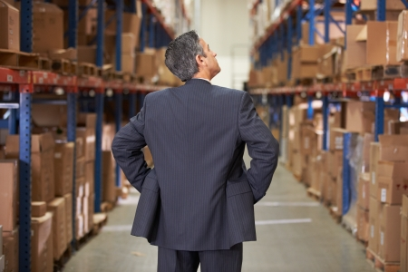 order shipment: Rear View Of Manager In Warehouse Stock Photo