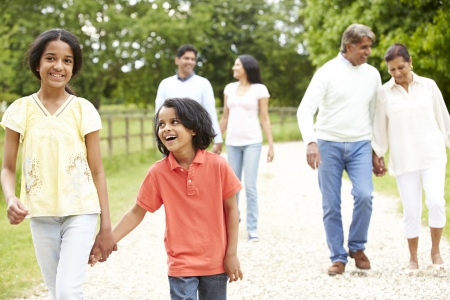 Muti-Generation Indian Family Walking In Countryside Stock Photo - 24508249