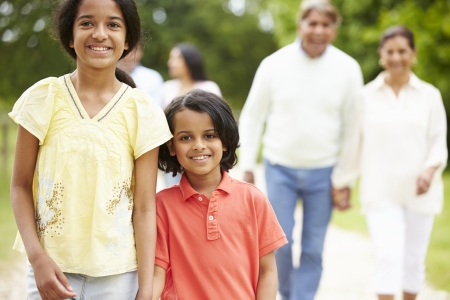 Muti-Generation Indian Family Walking In Countryside Stock Photo - 24507187