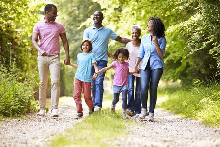 国の多世代のアフリカ系アメリカ人家族を歩く