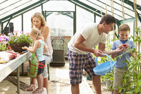 Family Working Together In Greenhouse Stockfoto