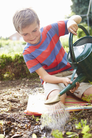 sufficiency: Boy Watering Seedlings In Ground On Allotment Stock Photo