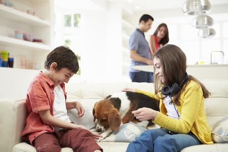 mujer con perro: Niños jugando con el perro en el sofá Como padres hacen comidas Foto de archivo