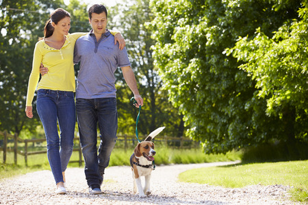 Hispanic Couple Taking Dog For Walk In Countryside
