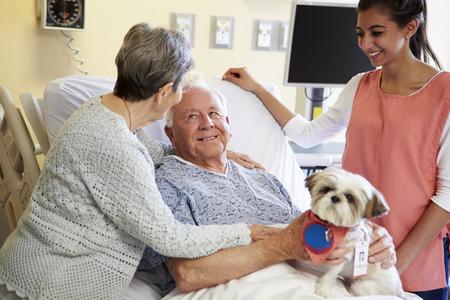 zooth�rapie: Dog Pet Therapy principal invit� Homme patient � l'h�pital