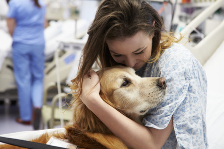 Therapy Dog Visiting Young Female Patient In Hospital Stockfoto