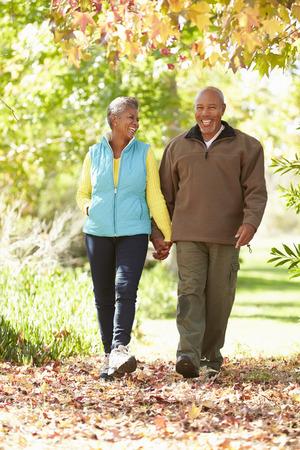 parejas caminando: Pares mayores que recorren a trav�s del arbolado del oto�o