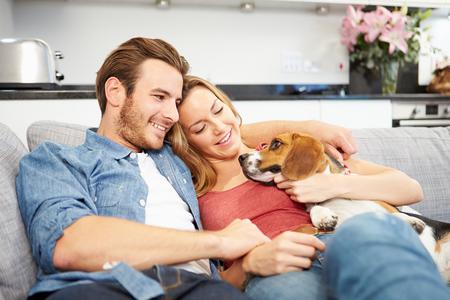 mujer perro: Pareja joven que juega con el perro mascota en casa