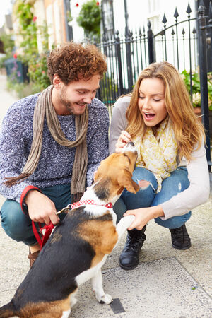 Couple Taking Dog For Walk On City Street photo