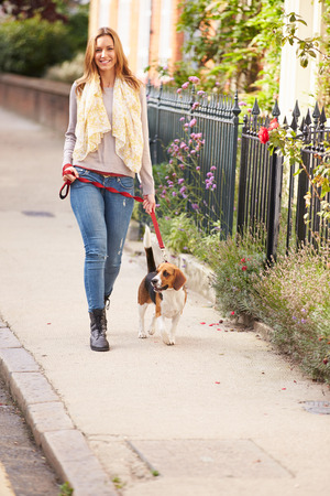 Woman Taking Dog For Walk On City Street photo