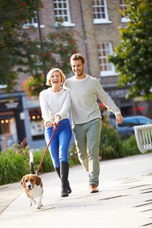 도시 공원에서 산책 개를 복용 커플 스톡 콘텐츠