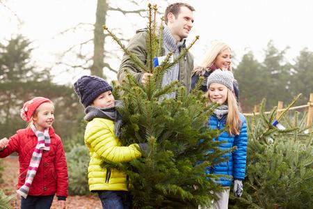 chicas comprando: Familia al aire libre elección de árbol de navidad junto Foto de archivo