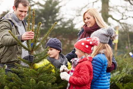 Outdoor Family Choosing Christmas Tree Together Фото со стока