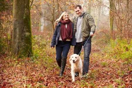 Couple Walking Dog Through Winter Woodland photo