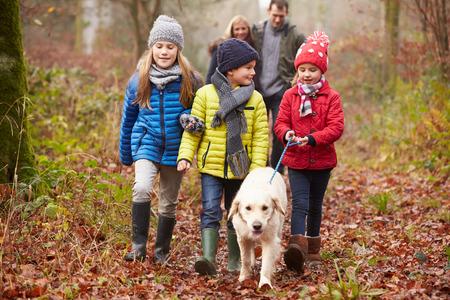 Familia que recorre a través del arbolado del invierno del perro