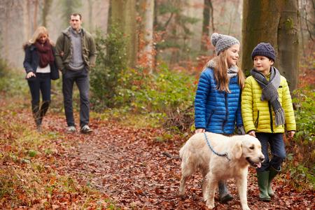 séta: Családi Walking Dog keresztül Winter Woodland Stock fotó