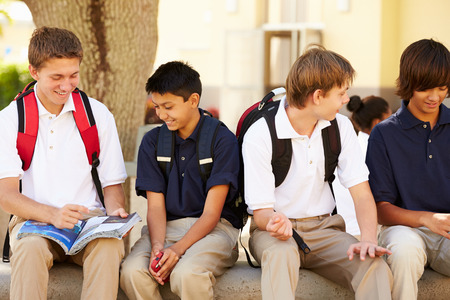 highschool student: Male High School Students Hanging Out On School Campus