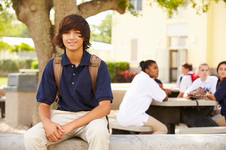 uniform clothing: Portrait Of Male High School Student Wearing Uniform