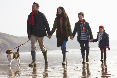 father and son holding hands: Rear View Of Family Walking Along Winter Beach With Dog Stock Photo