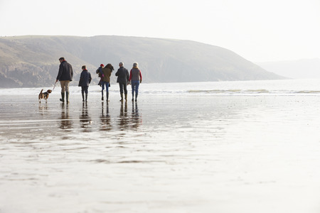 Multi Generation Family Walking On Winter Beach With Dog