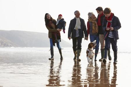 多世代家族の犬と一緒に冬のビーチの上を歩いて