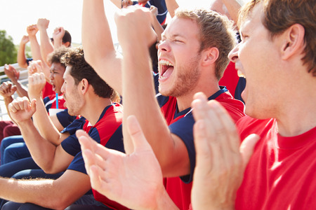 cheering fans: Spectators In Team Colors Watching Sports Event